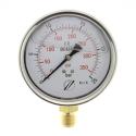 mano linéaire 100 mm 1/2 - fixation périphérique - 0-25 bar